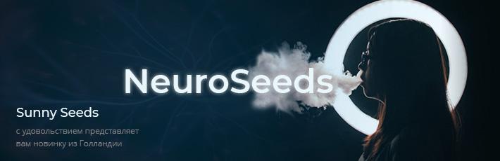 Neuro Seeds
