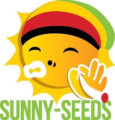 Sunny-seeds.info
